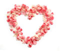 Flower Petals in a heart shape Royalty Free Stock Photo
