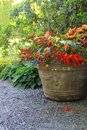 Flower planter beautiful shade filled with trailing begonias and lobelia Royalty Free Stock Photography