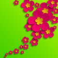 Flower poster spring pink flowers on green background Stock Image