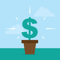 Flower pot dollar sign with growing Royalty Free Stock Photos