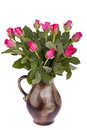 Flower pot with roses Royalty Free Stock Photo