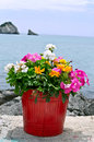Flower pot with sea Royalty Free Stock Photo