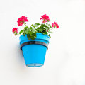 Flower pot on wall mijas andalusia spain Stock Photo