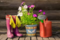 Flower pot,watering can/pot and rubber boots Royalty Free Stock Photo