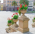 Flower pots pot in piazza d italia sassari Stock Photography
