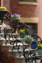 Flower Pots on Steps Royalty Free Stock Photo