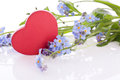 Flower with red wooden heart blue myosotis decoration Stock Images