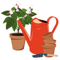 Flower room and watering pots can Stock Photography
