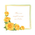 Flower rose frame isolated floral decor on white background wallpaper Stock Photos