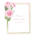 Flower rose frame isolated on white background floral decor with pink roses Stock Images