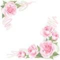 Flor rosa marco en blanco