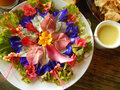 Flower salad spicy with honeyed herbal sauces Stock Images