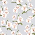 Flower seamless pattern with beautiful white alstroemeria lily flowers branch on vintage blue background template. Royalty Free Stock Photo