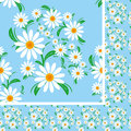 Flower seamless pattern with chamomiles on a blue background is presented Royalty Free Stock Photo