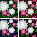 Flower seamless pattern in four colors is presented Royalty Free Stock Photography