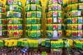 Flower seeds home and harden and pots in hornbach store romania Stock Photos