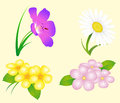 Flower set of four different flowers Royalty Free Stock Images