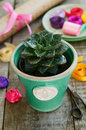 Flower shop cactus in green pot colorful ribbons wrappings stone rose and decor wrapping paper and scissors on wooden table Stock Image