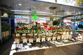 Flower shop in Grote Markt Royalty Free Stock Photo