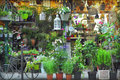 Flower shop in paris france Royalty Free Stock Photography