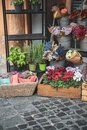 Flower shop in rome Italy near the spanish steps plazza Royalty Free Stock Photo
