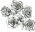 Flower sketch bouquet hand drawing for design Royalty Free Stock Photo