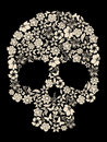 Flower skull vector Royalty Free Stock Photo