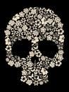 Flor cráneo