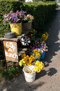 Flower stall independant by the road side Stock Photography
