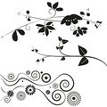 Flower and swirl decorations Royalty Free Stock Photo