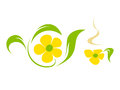 Flower tea illustration in vector Stock Images