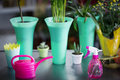 Flower vase, watering can, pot plant and spray bottle on table Royalty Free Stock Photo