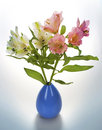 Flower vase on white background Royalty Free Stock Images