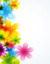Flower vector background brochure Royalty Free Stock Photos