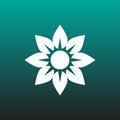 Flower vector icon illustration graphic design.