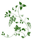 Flower and vine pattern Royalty Free Stock Photo