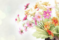Flower vintage paper Royalty Free Stock Photo