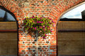 Flower on the wall old brick Stock Image