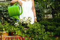 Flower watering woman Stock Image