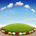 Flowerbed the beautiful background with Royalty Free Stock Photos