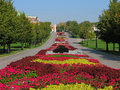 Flowerbed colorful in city park russia moscow tsaritsyno Royalty Free Stock Image
