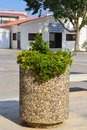 Flowerbed in courtyard of Saint George Church in Paralimni, Cyprus on June 12, 2018. Royalty Free Stock Photo
