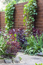 Flowerbed with decorative plants along the wooden fence Royalty Free Stock Photo