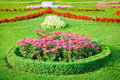 Flowerbed flower bed and green grass Royalty Free Stock Photos