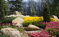 Flowerbed with a flowers, white, yellow, red tulips, rocks and green grass. Royalty Free Stock Photo
