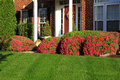Landscaping in Front of House Royalty Free Stock Photo