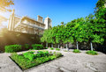 Flowerbed in residence green vorontsov s at sunny day Royalty Free Stock Photography