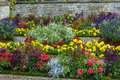Flowerbed in sanssouci germany with different colorin park Royalty Free Stock Photos