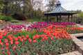 Flowerbed spring garden with tulips and pavilion Stock Image