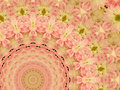 Pink Flowered Kaleidoscopic De...